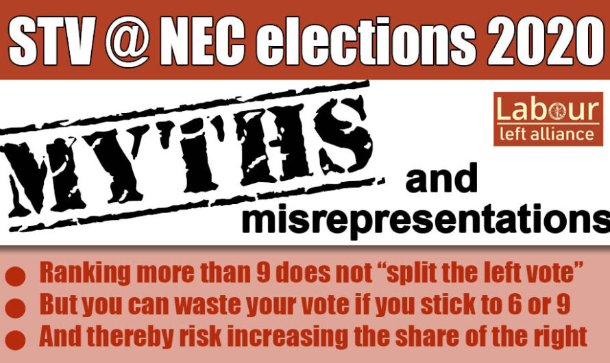 NEC elections: STV – myths and reality