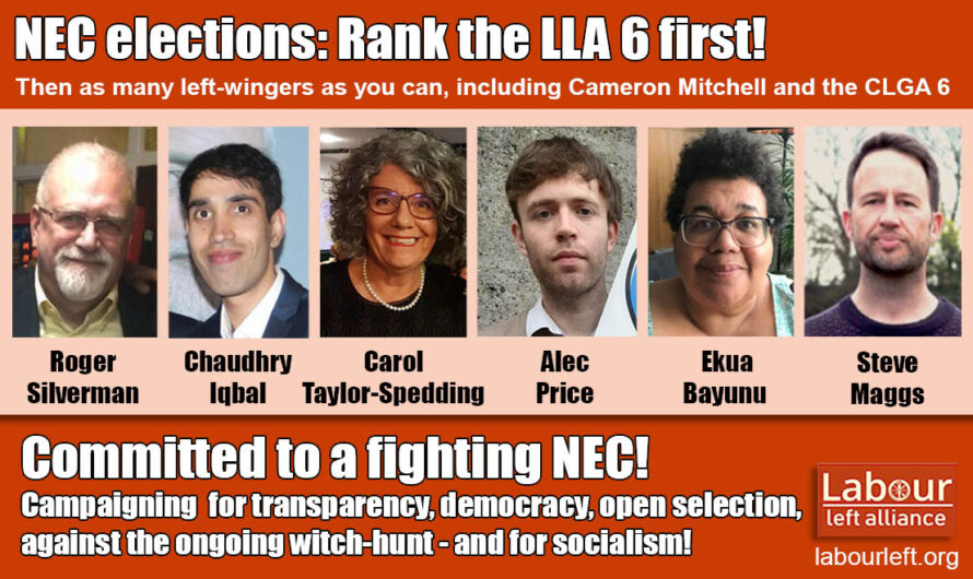 NEC elections: Rank the LLA 6 highest!